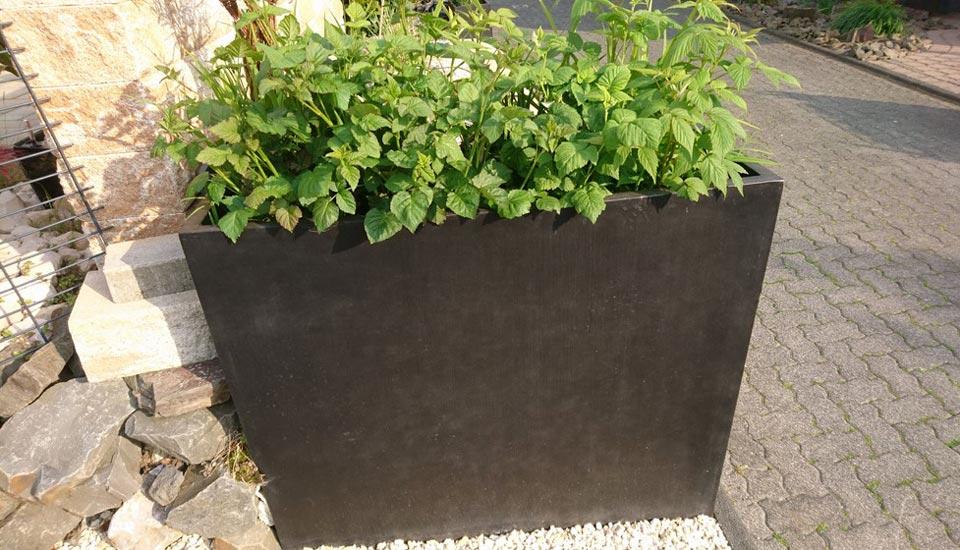 Urban_MT-Gartendesign01